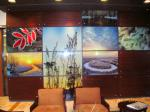 Wall Graphics Mounted w Standoffs.jpg