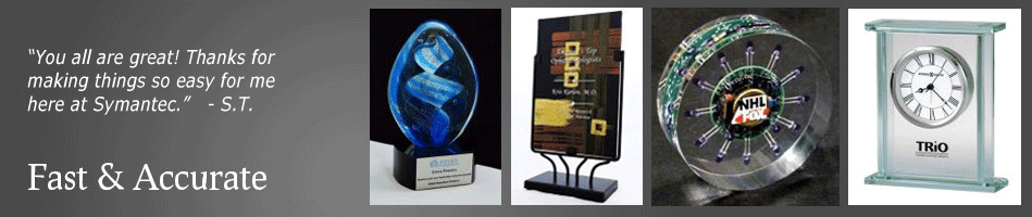 First Place Silicon Valleys Awards and Recognition Leader